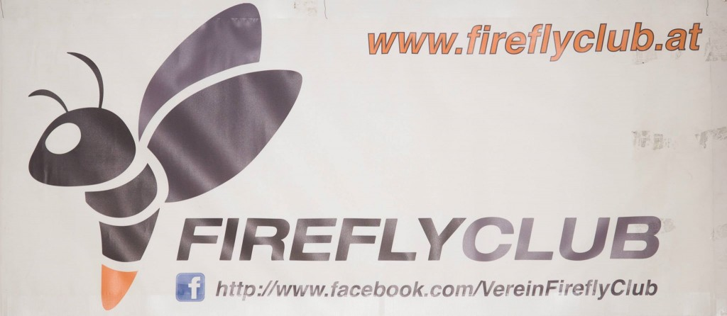 FireFlyParty (7)